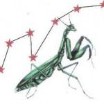 7-star-mantis-150x150